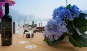 028-Vista-Lido-Albergo-Posta-Morcote Svizzera-Ticino-Lago-Lugano